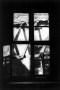blickauskuechenfenster