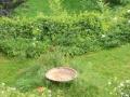 blickindensuedgarten